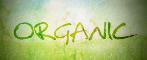 organic_site_traffic